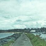 A Bumpy Road